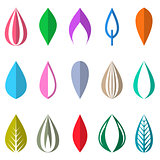Colorful simple leaves isolated