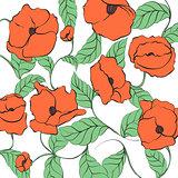 Stylized Poppy illustration