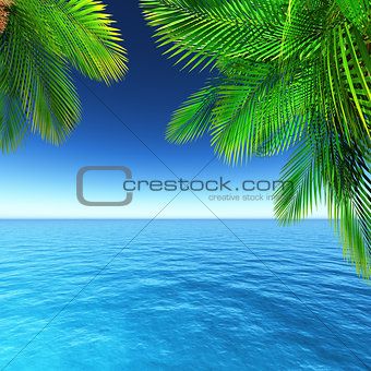 3D tropical landscape with palm trees and ocean