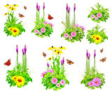 Set of summer flowers, butterfly, caterpillar and green leaves