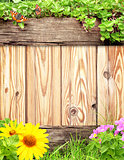 Summer background with wooden plank, butterfly, grass and green