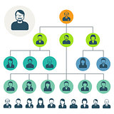 Staff hierarchy or organization structure scheme