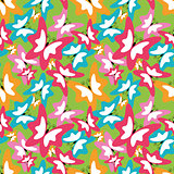 summer seamless pattern with butterfly. vector