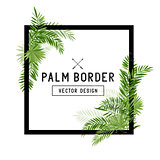 Tropical Palm Leaf Border Vector