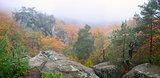 cedar cliff fog