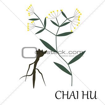 chai-hu Chinese herb