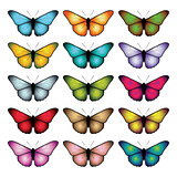 Set of butterflies isolated on white background.