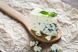 Piece of the blue cheese on the wooden spoon