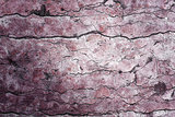 Beautiful grunge stone texture