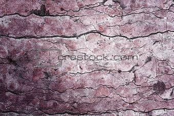 Beautiful grunge stone texture