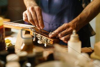 Artisan Lute Maker Fixing Stringed Instrument Replacing Guitar C