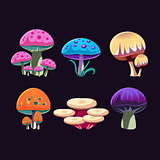 Fantastic Mushrooms Set