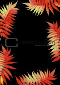 Flaming Scarlet Rowan Leaves