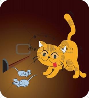 Cat&Rat