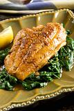 Catfish with spinach