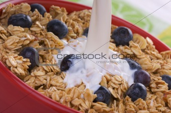 Bowl of Granola and Blueberries and Milk