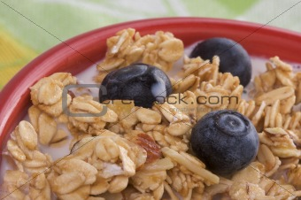 Bowl of Granola and Blueberries in Milk