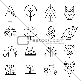 Abstract Forest Drawing Collection