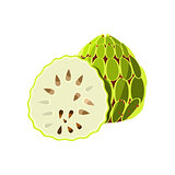 Soursop Flat Vector Sticker