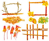 drawing of dried fall leaves of plants  and branches isolated el