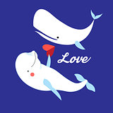 Illustration of white whales in love