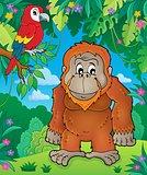 Orangutan theme image 2