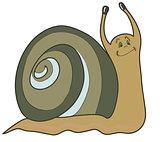 Funny snail, vector