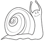 Decorative snail contour