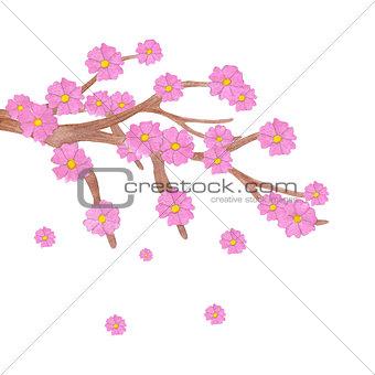 Watercolor sakura branch with blooming flowers.