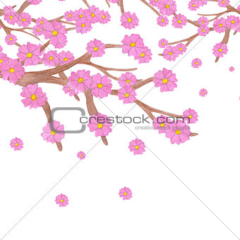 Watercolor sakura branch with blooming flowers and copy space.