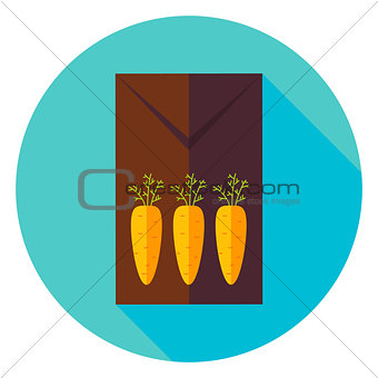 Three Carrots Garden Package with Seeds Circle Icon