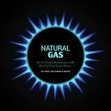 vector gas burner