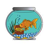 Pet Goldfish in Bowl