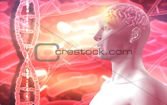 3D medical background with male figure with brain and DNA strand