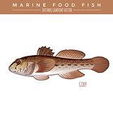 Goby. Marine Food Fish