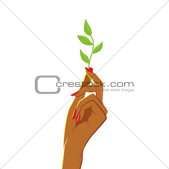 African womans hand holding green twig