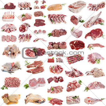 group of meat