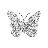 Butterfly in black design