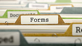 Forms on Business Folder in Catalog.