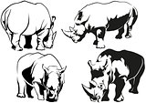 Rhinoceros Tattoo Drawings