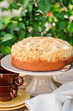 Round Streusel Fruit Cake on a Cake Stand