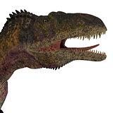 Acrocanthosaurus Dinosaur Head