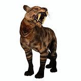 Saber-tooth Cat Growl