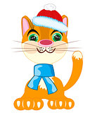 Cat in festive cloth