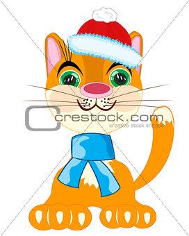 Cat in festive cloth