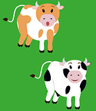 two cute cow,  isolated cartoon calf