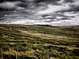 Atmospheric Moorland
