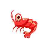 Shrimp. Vector Illustration