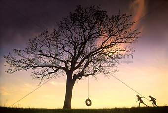 Tire Swing Tree