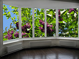 windows overlook to the garden with big bush of lilac